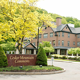Cedar Mountain Commons